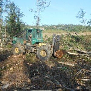 Le bois est récupéré et broyé pour le chauffage des serres de Pierrelatte